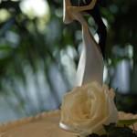Wedding Planners Palm Beach 19