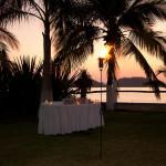 Wedding Planners Palm Beach 45