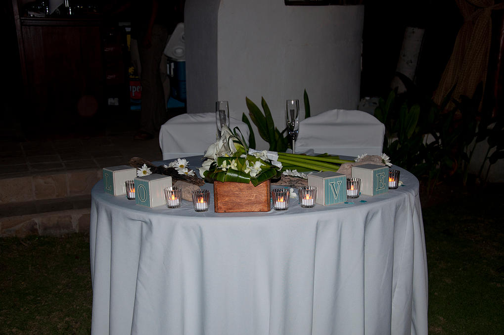 Wedding Planners Palm Beach 46