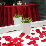 Wedding Planners Palm Beach 63