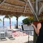 Wedding Planners Palm Beach 8